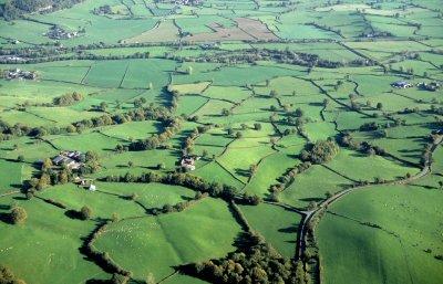 Enclosure Farming